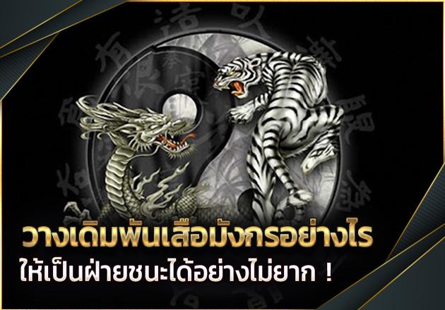 เดิมพันเสือมังกรอย่างไรให้มีโอกาสรับกำไรมากขึ้น