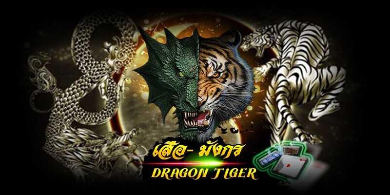 รวมสูตร เกมไพ่ใบเดียวรู้เรื่องเสือมังกรออนไลน์